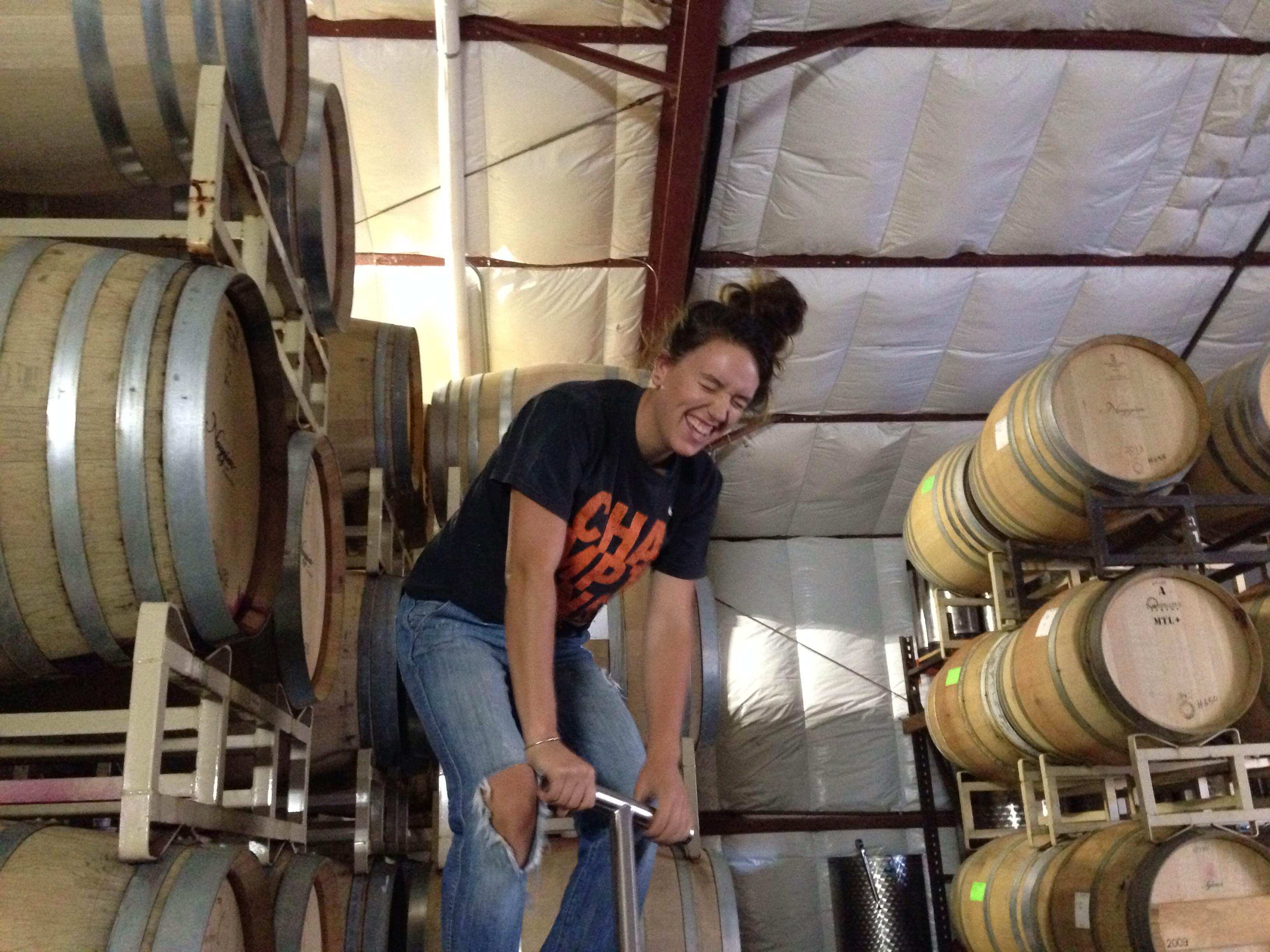 interns 14 0 naggiar vineyards naggiar vineyards