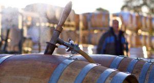 Wine Tasting in Auburn